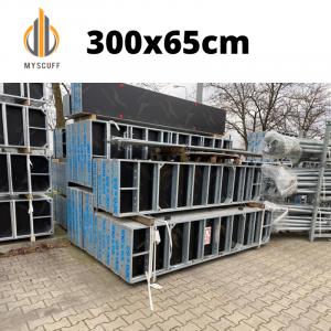 Schalungstafel S2 300x65